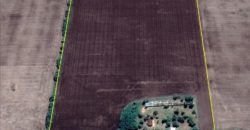 15 Has CAMPO AGRICOLA – ZARATE